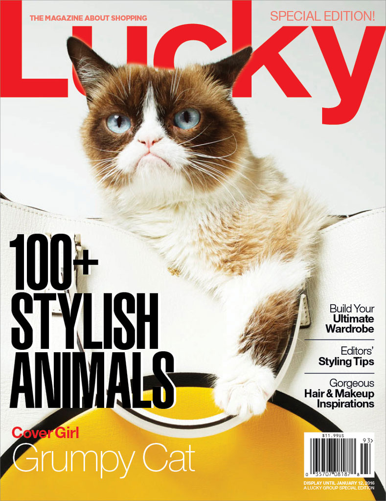 grumpy-cat-lucky-cover-2015